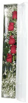 Çanakkale hediye sevgilime hediye çiçek   5 adet gülden kutu güller