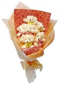 12 adet ayiciktan buket  Çanakkale hediye sevgilime hediye çiçek