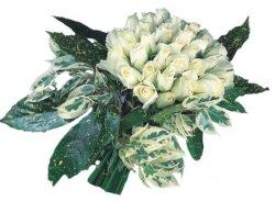 Çanakkale çiçek mağazası , çiçekçi adresleri  9 Beyaz gül Özel kisiler için