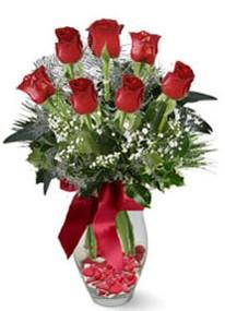 Çanakkale çiçek mağazası , çiçekçi adresleri  7 adet kirmizi gül cam vazo yada mika vazoda
