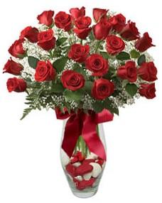 17 adet essiz kalitede kirmizi gül  Çanakkale çiçek satışı