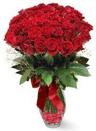 19 adet essiz kalitede kirmizi gül  Çanakkale İnternetten çiçek siparişi