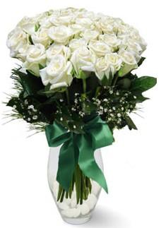 19 adet essiz kalitede beyaz gül  Çanakkale çiçek servisi , çiçekçi adresleri