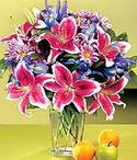 Çanakkale çiçek satışı  Sevgi bahçesi Özel  bir tercih