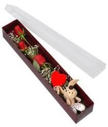 kutu içerisinde 3 adet gül ve oyuncak  Çanakkale online çiçekçi , çiçek siparişi