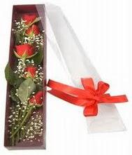 kutu içinde 5 adet kirmizi gül  Çanakkale çiçek mağazası , çiçekçi adresleri