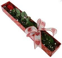 Tek kirmizi gül kutu içerisinde  Çanakkale ucuz çiçek gönder
