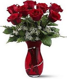 Vazo içinde 8 adet kirmizilar içinde güller  Çanakkale çiçek mağazası , çiçekçi adresleri