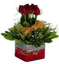 Çanakkale çiçek siparişi vermek  7 adet mika yada cam vazoda gül tanzimi