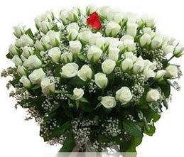 Çanakkale çiçek online çiçek siparişi  100 adet beyaz 1 adet kirmizi gül buketi