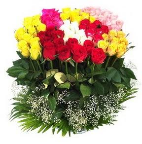 Çanakkale çiçek satışı  51 adet renkli güllerden aranjman tanzimi