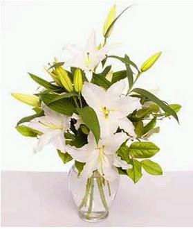 Çanakkale çiçek siparişi vermek  2 dal cazablanca vazo çiçeği