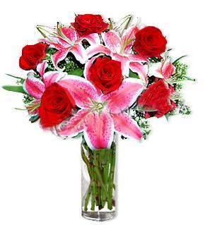 Çanakkale internetten çiçek siparişi  1 dal cazablanca ve 6 kırmızı gül çiçeği