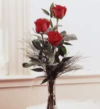 Çanakkale çiçek online çiçek siparişi  Vazoda 3 adet güzel gül