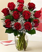 Sevgilime hediye 9 adet 1.ci kalite gül  Çanakkale çiçek gönderme sitemiz güvenlidir