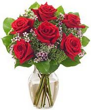 Kız arkadaşıma hediye 6 kırmızı gül  Çanakkale çiçek mağazası , çiçekçi adresleri