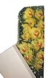 Çanakkale çiçek siparişi vermek  Kutu içerisine dal cymbidium orkide
