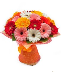 Renkli gerbera buketi  Çanakkale çiçek gönderme sitemiz güvenlidir
