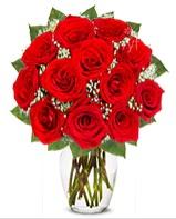 12 adet vazoda kıpkırmızı gül  Çanakkale yurtiçi ve yurtdışı çiçek siparişi