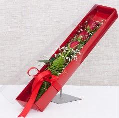 Kutu içerisinde 3 adet kırmızı gül  Çanakkale güvenli kaliteli hızlı çiçek