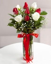 5 kırmızı 4 beyaz gül vazoda  Çanakkale online çiçekçi , çiçek siparişi