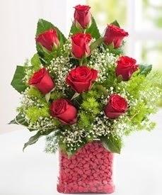 Cam içerisinde 9 adet kırmızı gül  Çanakkale çiçek online çiçek siparişi