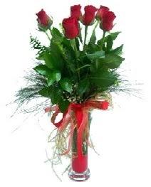 vazo içerisinde 5 kırmızı gül  Çanakkale ucuz çiçek gönder