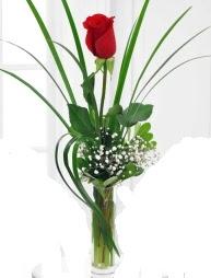 Cam içerisinde 1 kırmızı gül  Çanakkale çiçekçiler