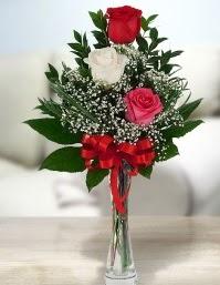 Camda 2 kırmızı 1 beyaz gül  Çanakkale uluslararası çiçek gönderme