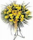 Çanakkale hediye çiçek yolla  Sari kazablanka Ferforje