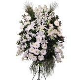 Çanakkale yurtiçi ve yurtdışı çiçek siparişi  Ferforje beyaz renkli kazablanka