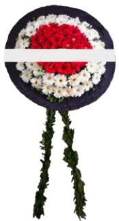 mozele çiçeği  Çanakkale çiçek yolla