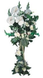 Çanakkale çiçek satışı  antoryumlarin büyüsü özel