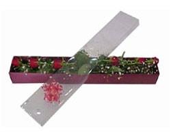 Çanakkale çiçek gönderme sitemiz güvenlidir   6 adet kirmizi gül kutu içinde
