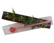 Çanakkale 14 şubat sevgililer günü çiçek  3 adet gül.kutu yaldizlidir.