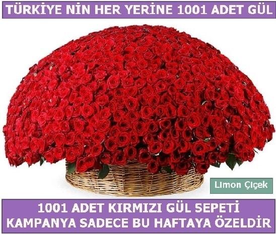 1001 Adet kırmızı gül Bu haftaya özel  Çanakkale internetten çiçek satışı