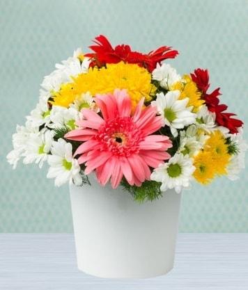 Seramik Vazoda Gelbera ve Papatya  Çanakkale çiçek siparişi vermek