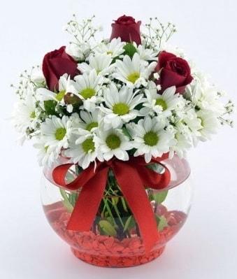 Fanusta 3 Gül ve Papatya  Çanakkale çiçek online çiçek siparişi