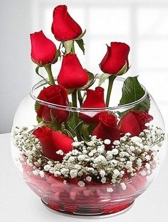 Kırmızı Mutluluk fanusta 9 kırmızı gül  Çanakkale hediye sevgilime hediye çiçek