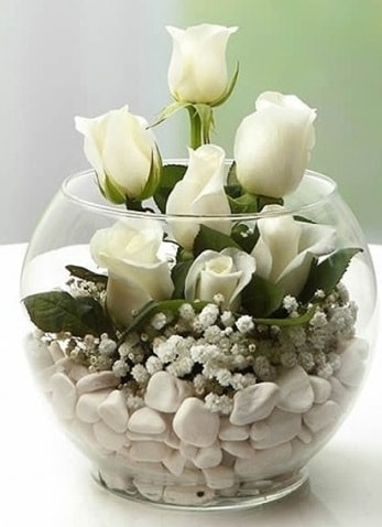 Beyaz Mutluluk 9 beyaz gül fanusta  Çanakkale hediye sevgilime hediye çiçek