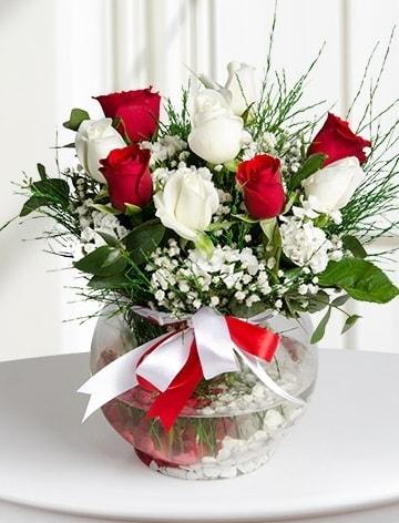 Aşk Küresi  5 beyaz 5 kırmızı gül fanusta  Çanakkale çiçek online çiçek siparişi