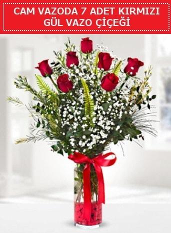 Cam vazoda 7 adet kırmızı gül çiçeği  Çanakkale çiçekçiler