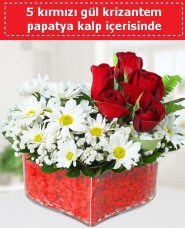 mika kalp içerisinde 5 kırmızı gül papatya  Çanakkale çiçek siparişi vermek