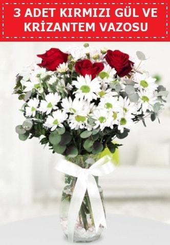 3 kırmızı gül ve camda krizantem çiçekleri  Çanakkale çiçek siparişi vermek
